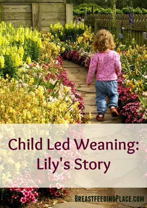 One mom's experience with child led weaning